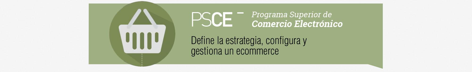 Programa Superior de Comercio Electrónico