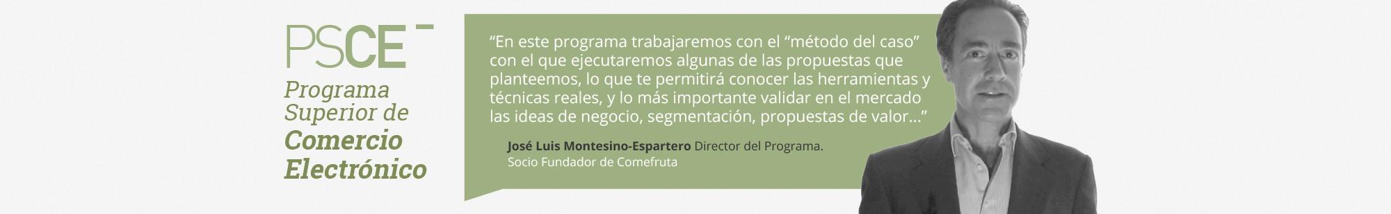 Programa Superior en Comercio Electrónico - Director