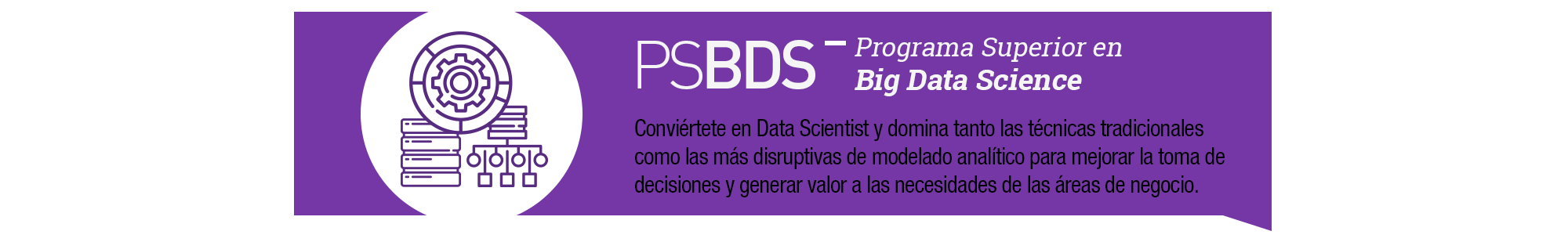 Imagen_slider_programa_superior_big_data_science